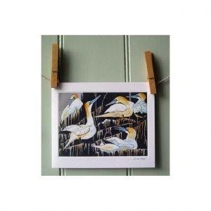 gannet-card resized