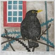 kirkcudbright-blackbird
