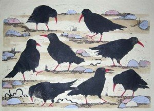 Chattering of Choughs ii