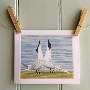 sandwich terns card