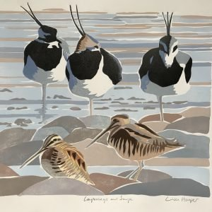 Lapwing and snipe linocut